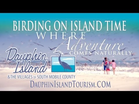 Birding is for families on Dauphin Island and the Villages of South Mobile County
