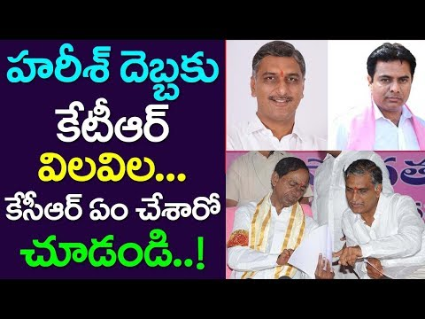 Harish Rao Impact On KTR, CM KCR Sensational Decision, TRS, Assembly
