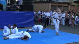 Day of Partenit 2015 c 2 Karate  mp4