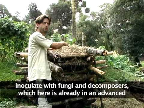 Ecovillages and Permaculture: a reference model for sustainable consumption?