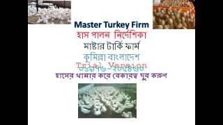 Turkey হাস পালন  নির্দেশিকা 01(01976-205460)
