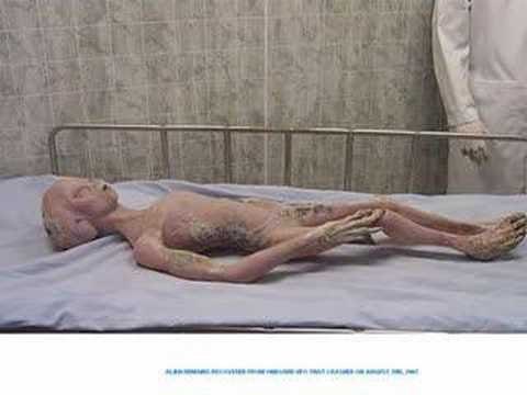 This alien corpse was recovered from a downed UFO on August 2nd, 2007 and was leaked from a hi up top secret gov't source official... Perseid meteor shower Surveillance video of Jerusalem...