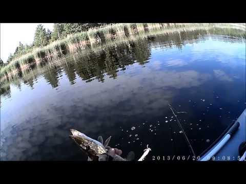 дзержинск платная рыбалка