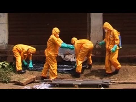 Ebola is hurting West African economies