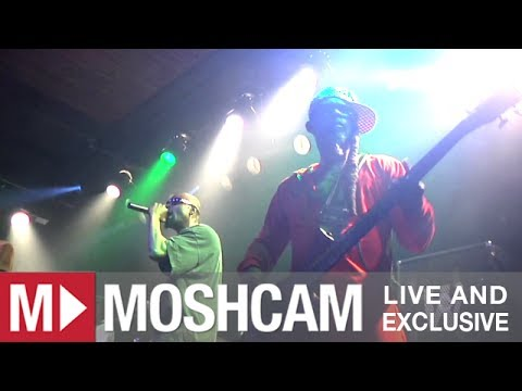 Fishbone - Lyin' Ass Bitch (Live @ San Francisco, 2012)