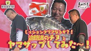 【おしえて!えさきちさん】ミッションクリア?!迫間浦のチヌとヤマザップしてみた~!