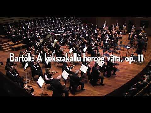 Három Bartók - Nemzeti Filharmonikusok (rövid)
