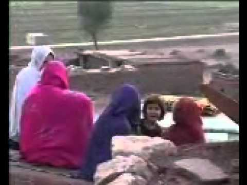 bibi shirini by byabid chagharzi almibanda