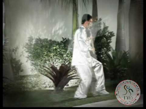Video Aula -tai Chi Chuan Para Iniciantes - Primeira Aula video
