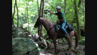 Faye Whittemore Trail Ride