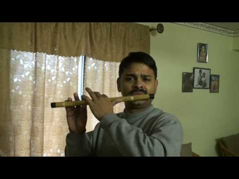 Man Dole Mera Tan Dole  - Flute Instrumental video