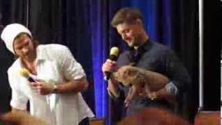 Misha Collins and Icarus the Pig Crashing J2 Panel -- DallasCon 2013
