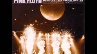 Watch Pink Floyd You Gotta Be Crazy video