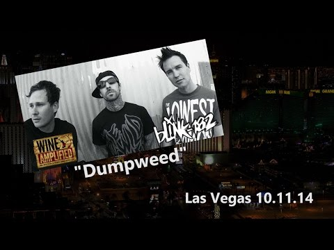 Blink 182 | Dumpweed | Wine Amplified | Las Vegas 2014 video