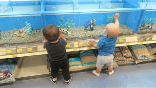 BABIES AND FISH!