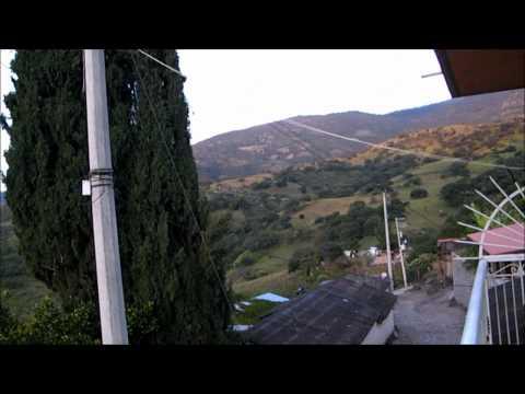 Los 5 Burros Cargados-Los Armadillos de la Sierra _tns