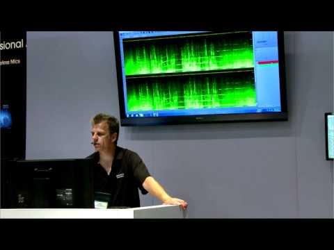 Spectral Layers - Advanced Audio Spectrum Editing