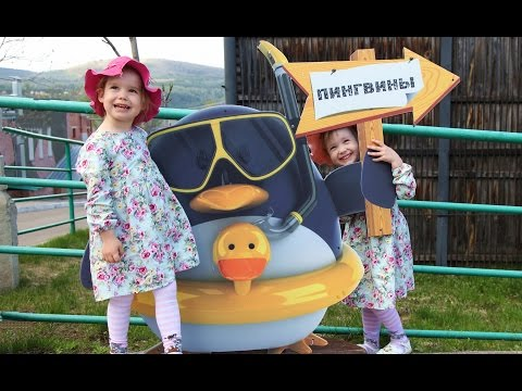 VLOG: Едем в Зоопарк! Видео для детей. Entertainment for children zoo. Девочка кормит животных.