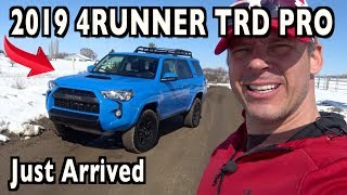 Just Arrived: 2019 Toyota 4Runner TRD Pro on Everyman Driver