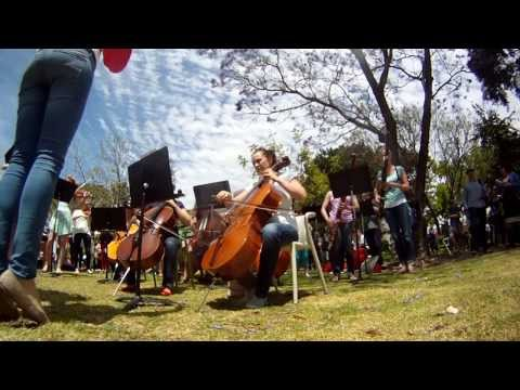 Flash Mob Curtin University & Perth Symphony Orchestra