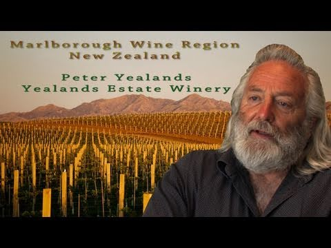 Marlborough Sauvignon Blanc Wine Region, ...