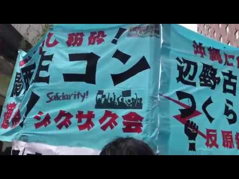 関生労組連帯・辺野古基地建設阻止を掲げて 第90回日比谷メーデーに参加