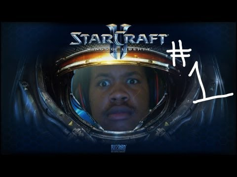 StarCraft 2: 1