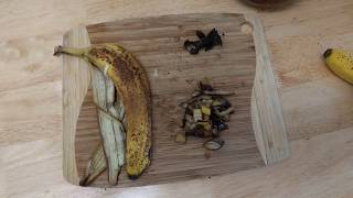 How to use Banana Peels as a Fertilizer If you love to Garden after watching this.
