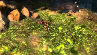 "Guild Wars 2 – ""Tiny Steps through Tyria"""