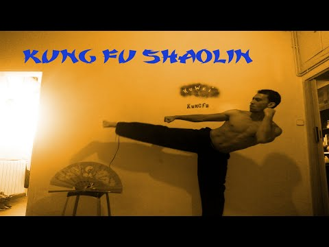 Kung Fu Motivation Training | NO LIMITS | Shaolin Workout Image 1