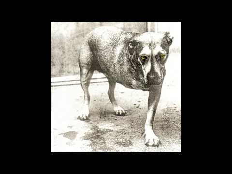 Alice In Chains - Frogs