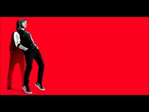 David Guetta - Play Hard ft. Akon & Ne-Yo Lyrics (