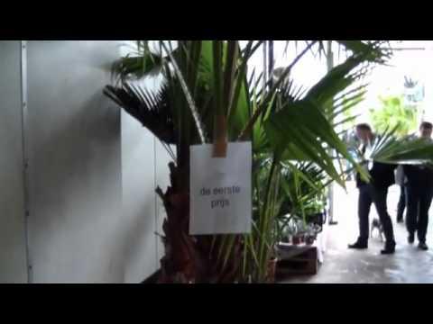 Kom In De Kas 2012 Erica Drenthe Gardenpalms Europe B V    YouTube