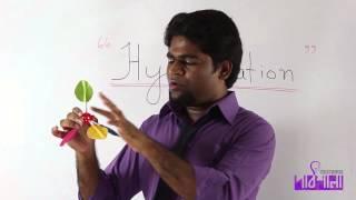 01. Hybridization | OnnoRokom Pathshala