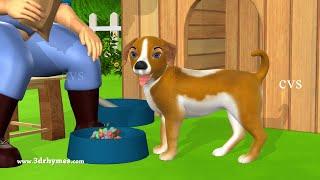 Bingo Song | Bingo Rhymes For Children + More 3D Animation Nursery Rhymes & Kids' Songs
