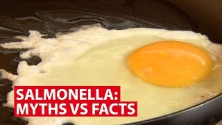 Salmonella: Myths vs Facts | Talking Point | CNA Insider