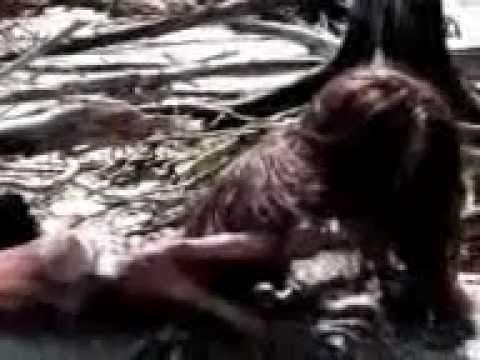 Real Mermaid Video Caught on