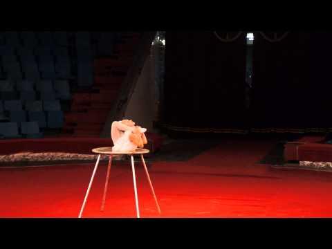 akrobatika-na-stole