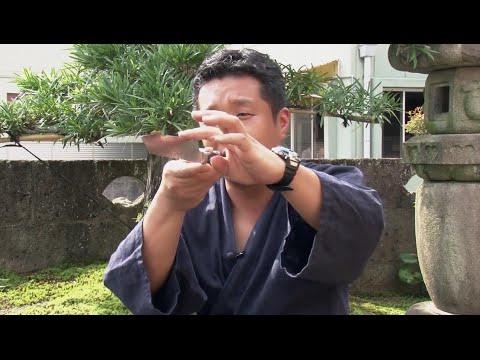 Производство ножей Samura в Японии