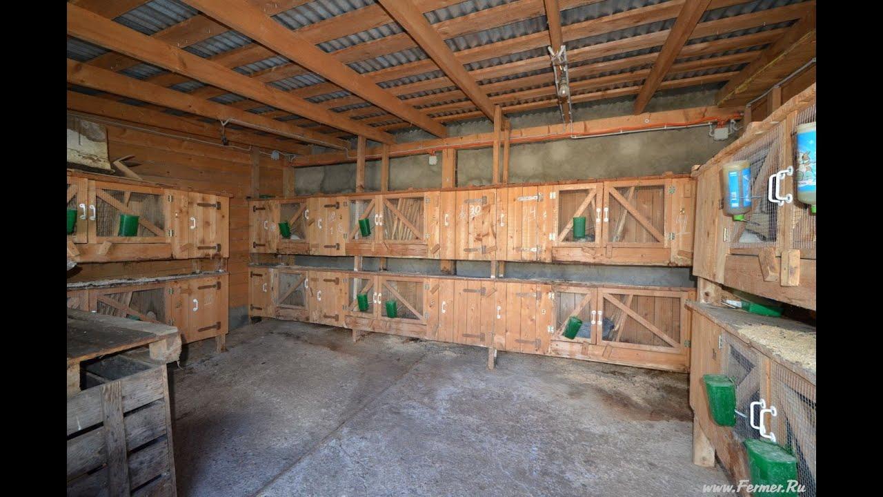 Как построить сарай для нутрий своими руками 24