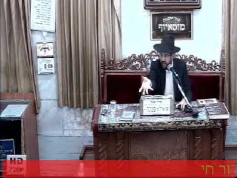 """הרה""""ג הרב מאיר אליהו שליט""""א - וישב תשע""""ח"""