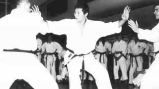 The Source of Shotokan Karate