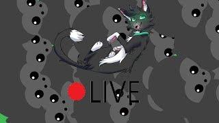 Mope.io LIVESTREAM // LET'S MAKE A GORILLA ARMY // Tag-≽ᑕØ≼ // USA 2 East // Cat Origins
