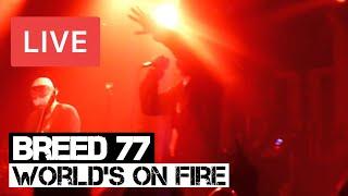 Watch Breed 77 Worlds On Fire video