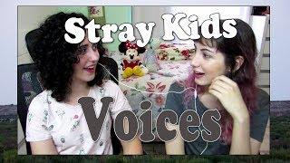 MV Reaction  - Stray Kids 'Voices' PTBR