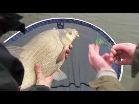 Visblad TV - Method Feeder
