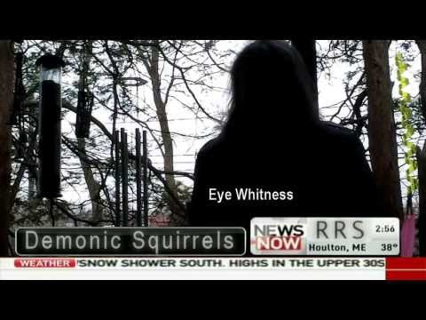 Breaking News - Demonic Squirrels