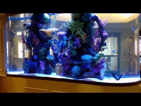 Infinity Aquarium Design of Las Vegas