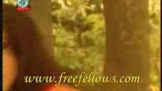 SHUBIR NONDI -ekta chilo shonar konna (alternative video)