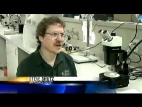 April, 2007:  KTVU 2 Story On District's Open House